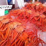 新潟キャンパー旅③ 寺泊・魚の市場通り